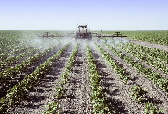 Prenatal exposure to certain pesticides may boost a child's risk of autism by 60 percent, new research suggests. (Shutterstock)