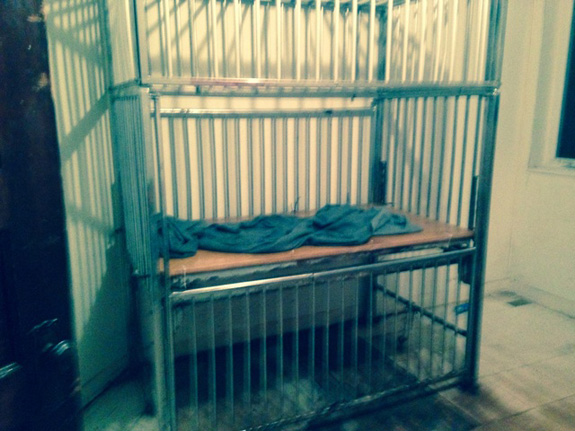 A 19-year-old man with a disability was discovered in a Michigan home last week locked in a cage. (Huron County Sheriff's Office)